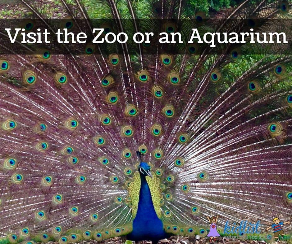 Visit the Zoo or an Aquarium
